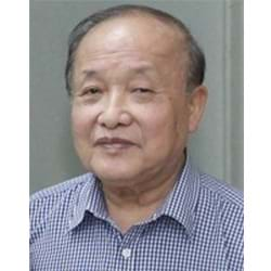 Prof. Dr. Sc. TRAN VINH DIEU <p>New Materials Technology</p><p>Hanoi University Technology</p>